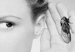 缓解神经性耳鸣的方法是什么