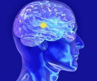 短暂性脑缺血与脑梗