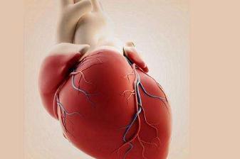 心脏房颤是什么原因