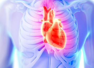 室上性心动过速的预防