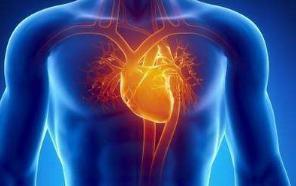 如何治疗心房扑动