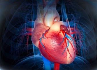 心脏房颤是什么症状