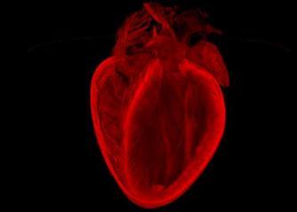 快速型心律失常如何护理