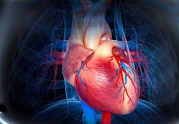 什么引起快速型心律失常