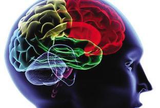 缺血脑血栓怎么预防好