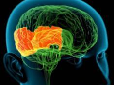 脑梗后血压高怎么办